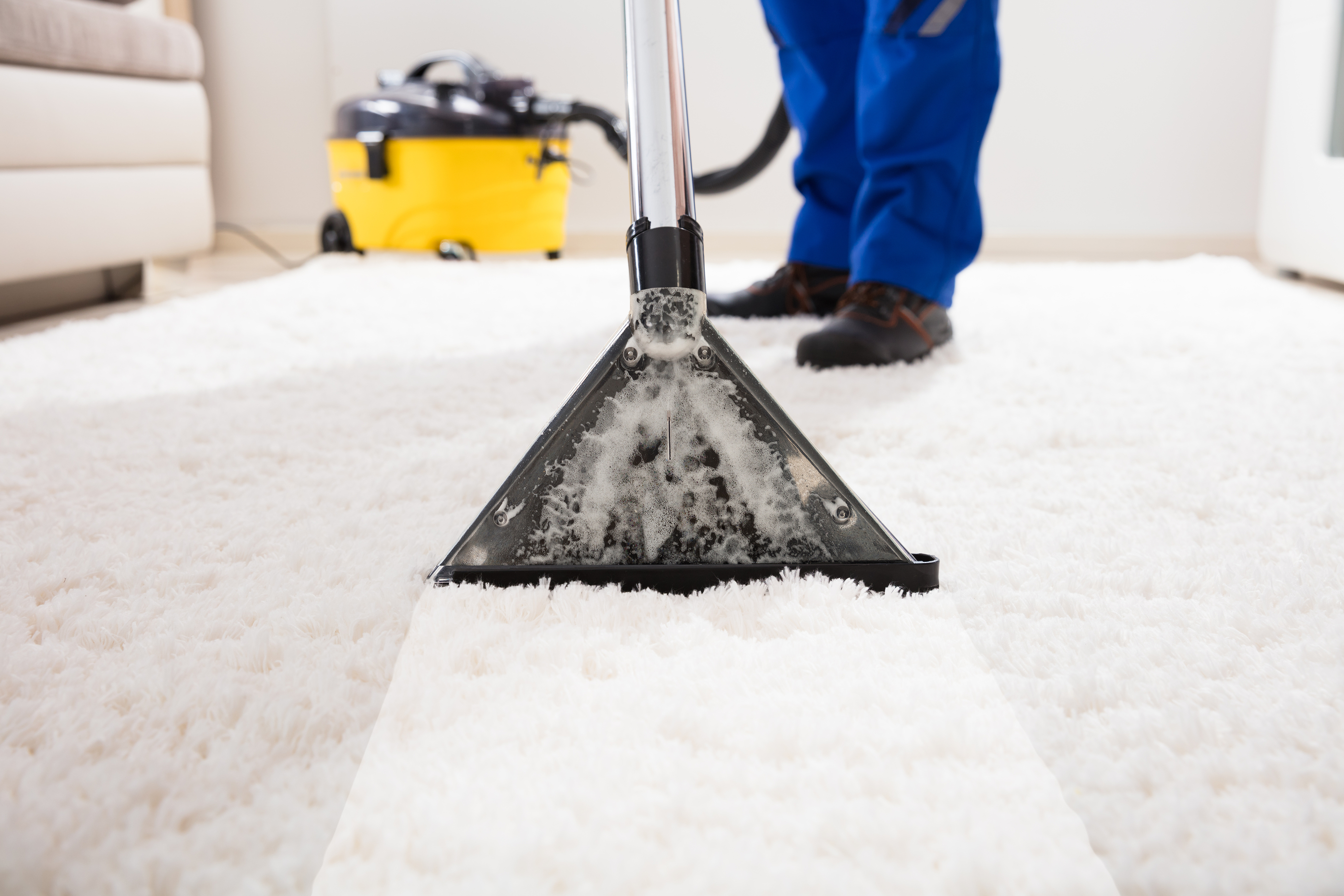 Suffolk County Carpet Cleaning